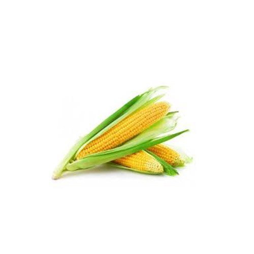 BHUTTA (CORN ON THE COB)